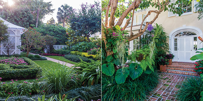 From Left: A Palm Beach Garden Features An Orchid House, Precisely  Manicured Beds, And Borders Of Tropical Plants; A Massive Pigeon Plum Tree  Adorned With ...