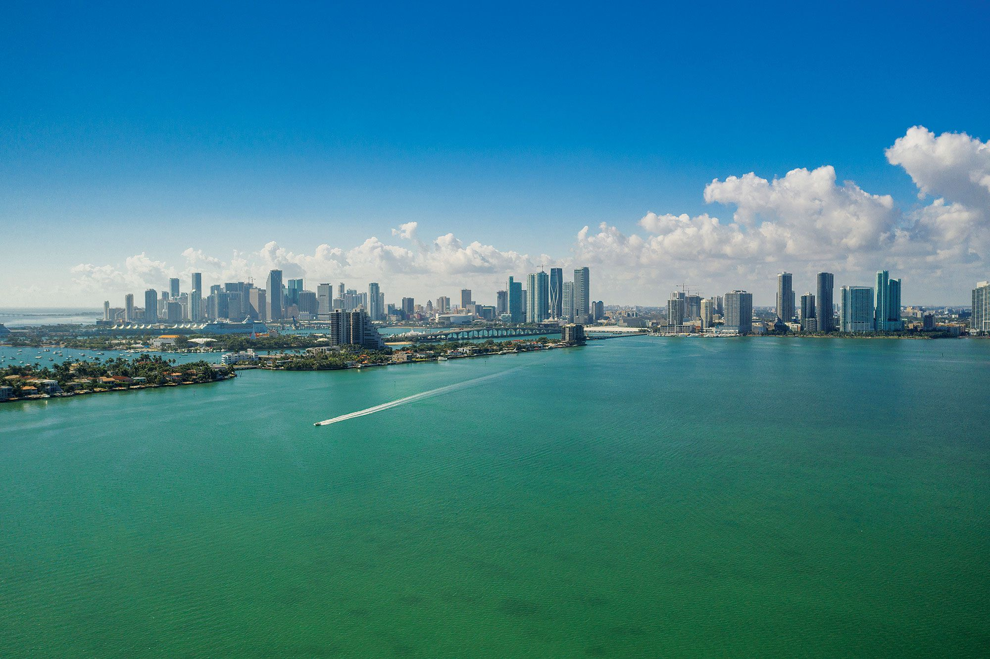 Urban Miami's sprawling Biscayne Bay hosts hero species such as tarpon, bonefish and permit.